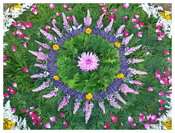 whitney krueger earthereal nature natural art botanical mandala elemental infusion