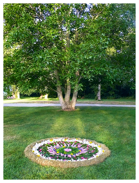 earthereal nature natural art botanical mandala elemental infusion