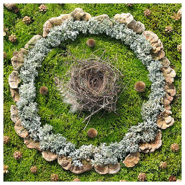 art, botanical, earth, eco, environmental, fungi, gnome, mandala, mushrooms, mycelium, mycorestoration, natural