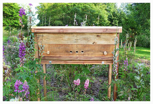 bee, DIY, hive, pallet, project, reclaimed, recycled, repurposed, salvage, shipping, top bar, upcycled, wood