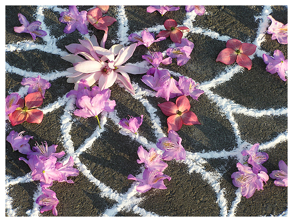 divine design kolam rangoli sacred art geometry floral flowers feminine mandala