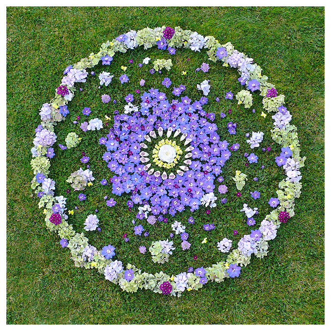botanical flower floral mandala nature natural art