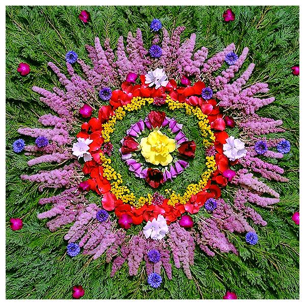 art, botanical, earth, eco, environmental, floral, flower, living, mandala, natural, nature