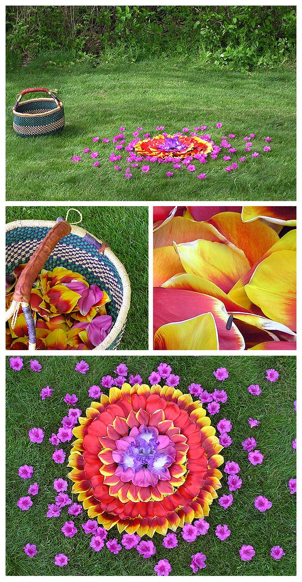 floral flower botanical mandala earth nature natural art color harmonics healing