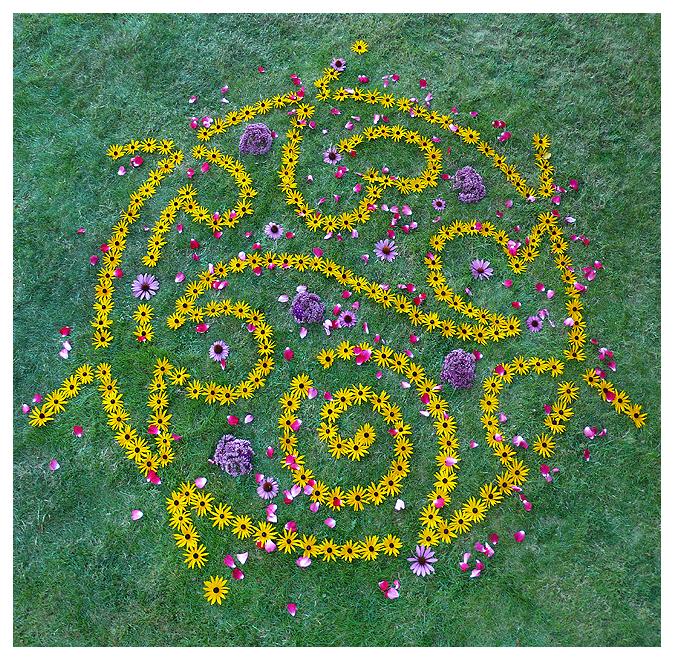 whitney krueger earthereal glyph botanical nature art visionary environmental language of light