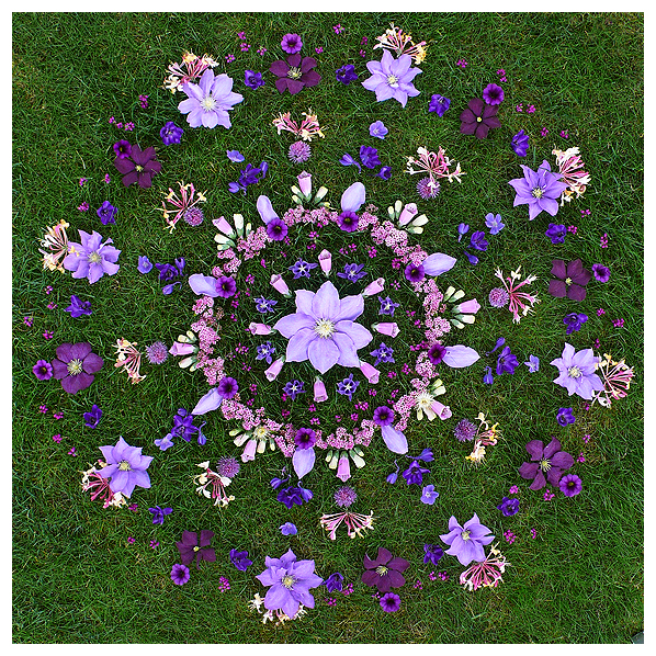 nature natural earth work environmental flower floral earthereal art botanical healing mandala